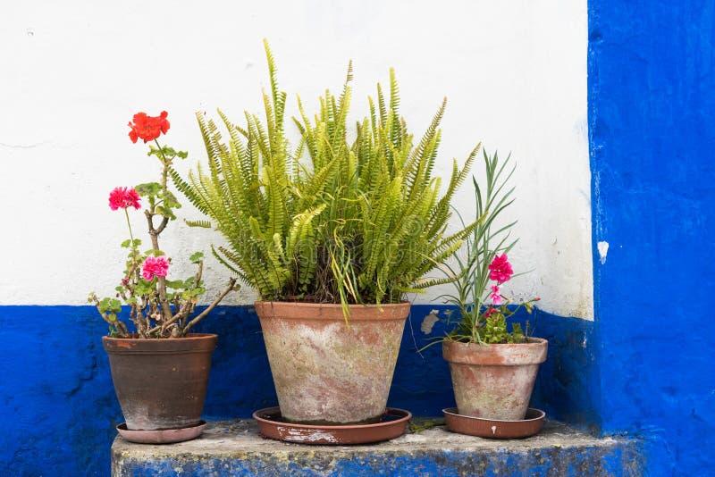 Blomkrukor i framdel av det gamla huset fotografering för bildbyråer