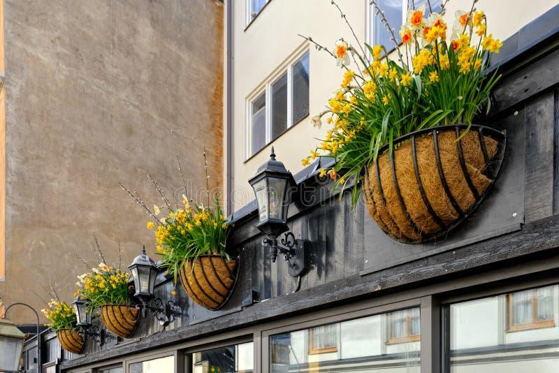 Blomkrukor som hänger på väggen fotografering för bildbyråer