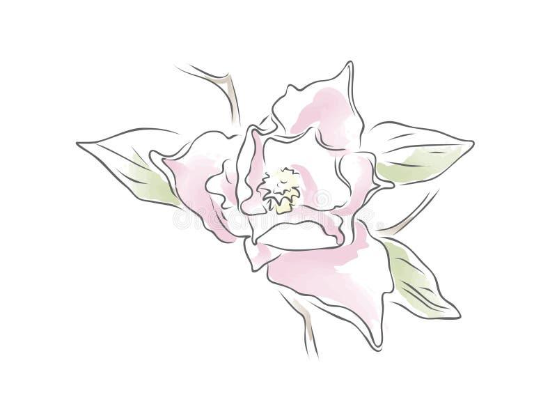 Blomma royaltyfri bild