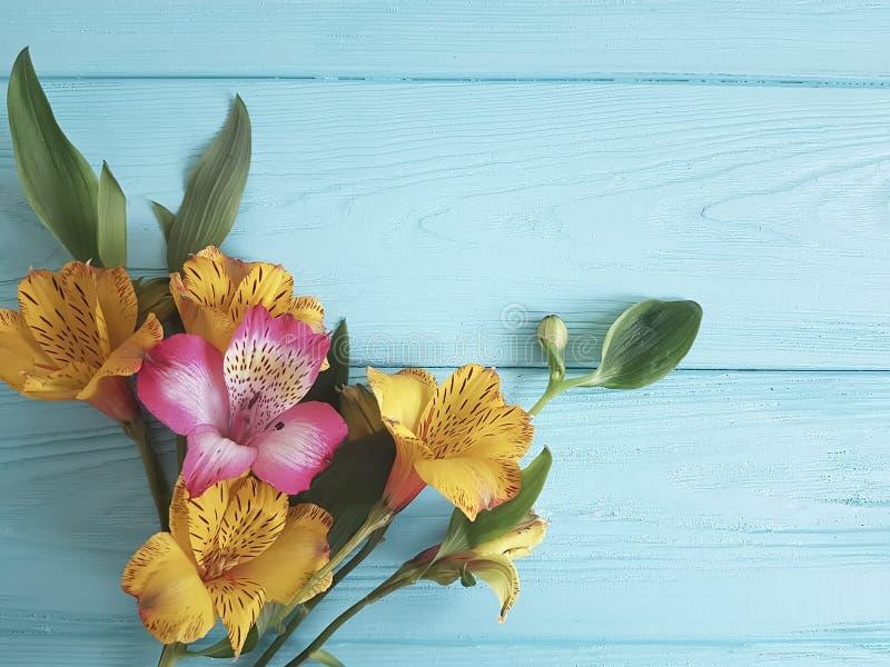 Blomma alstroemeria på färgen träbakgrund, ram royaltyfri fotografi