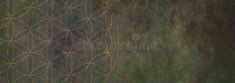 Blomma av lantlig stenbakgrund för liv - royaltyfria foton