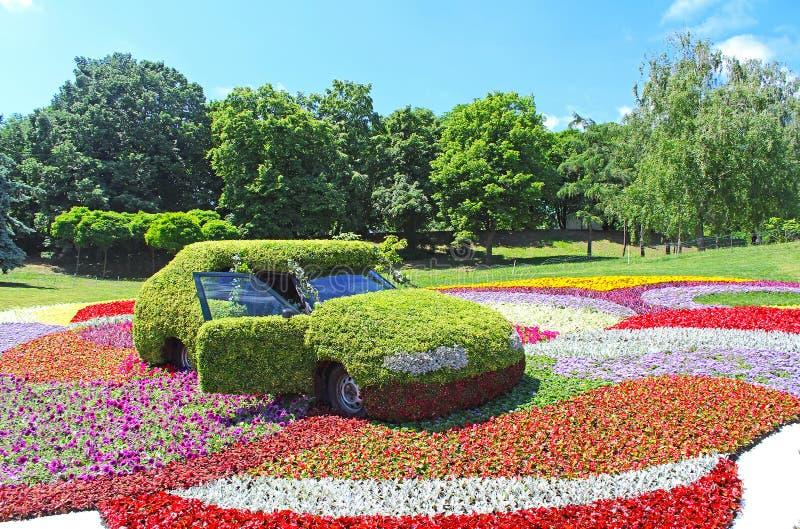 Blomma bilutställningen på Spivoche Pole i Kyiv, Ukraina royaltyfria bilder