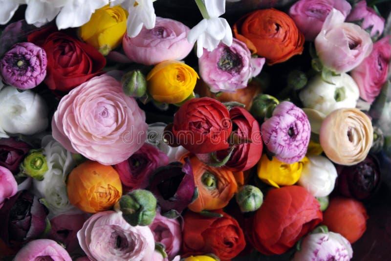 Blomma bröllopordningen med ranunculusen, pionen, rosor royaltyfri foto