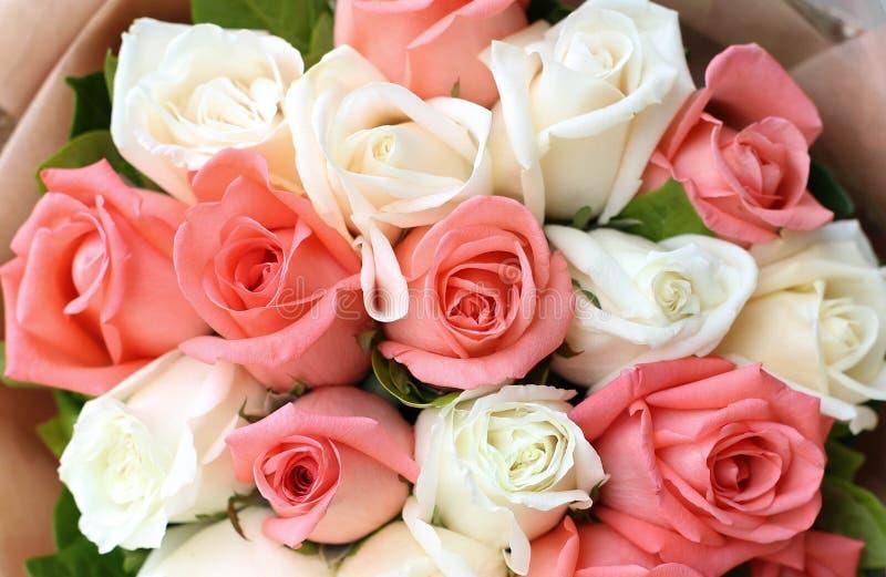 Blomma för rosa och vita rosor för bukett royaltyfri bild