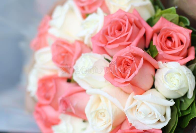 Blomma för rosa och vita rosor för bukett fotografering för bildbyråer