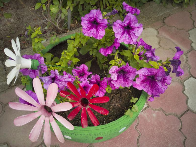 Blomma från en plast- flaska Garnering för trädgården gör den själv Återanvända plast- Dekoren av avfallsen blommar vasen royaltyfria bilder