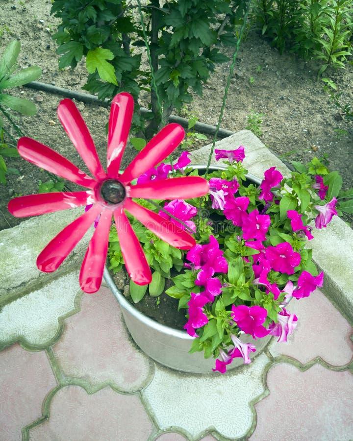 Blomma från en plast- flaska Garnering för trädgården gör den själv Återanvända plast- Dekoren av avfallsen blommar vasen arkivfoton