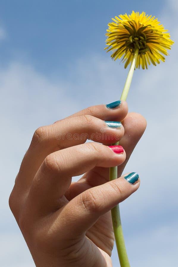 blomma handholdingen arkivfoton