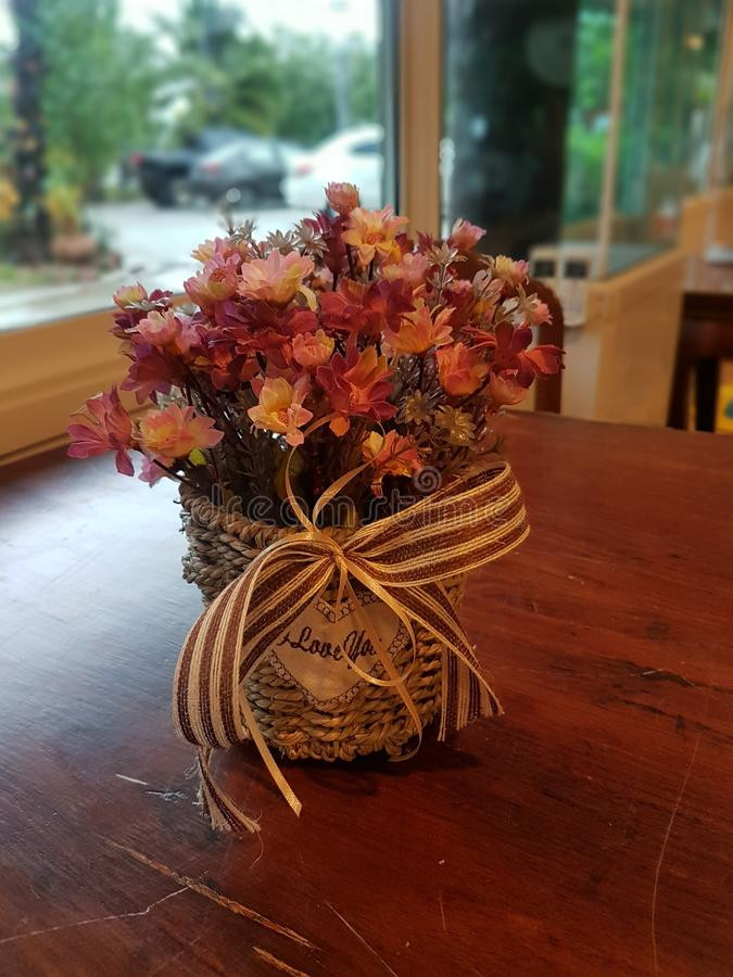 Blomma i liten kruka arkivfoton