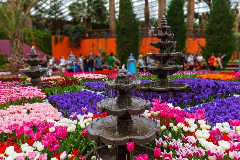Blomma kupolen på trädgårdar vid fjärden i Singapore royaltyfria foton