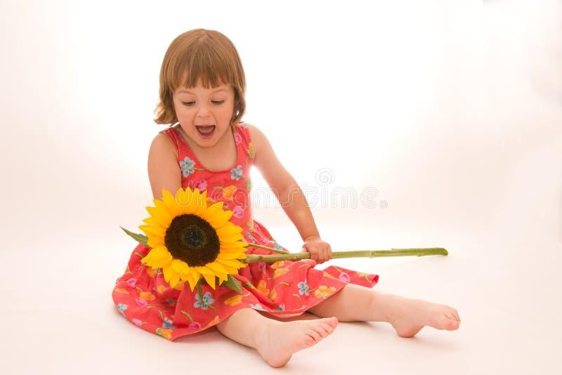 blomma little som är min fotografering för bildbyråer