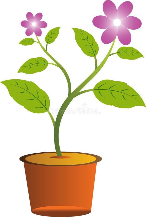 Blomma med krukan vektor illustrationer