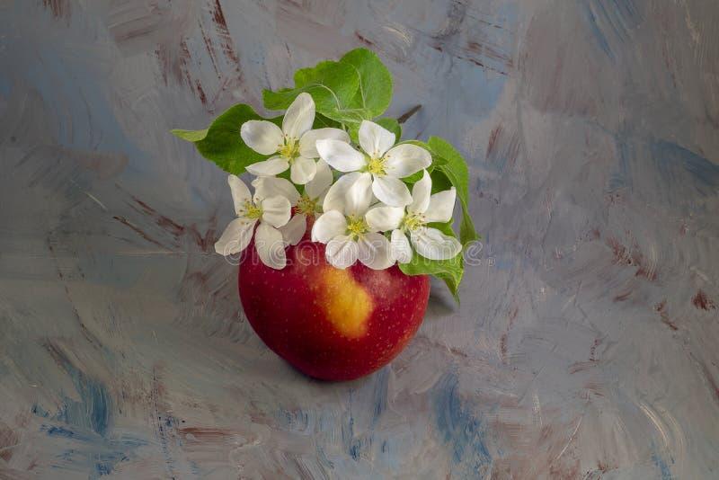 Blomma- och äpplefrukt royaltyfria bilder
