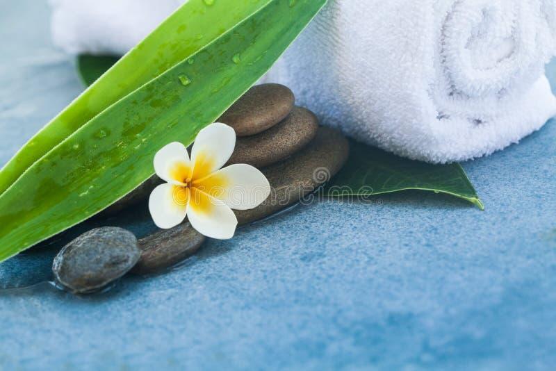 Blomma- och brunnsortsidor med stenar för vård- massage arkivbilder