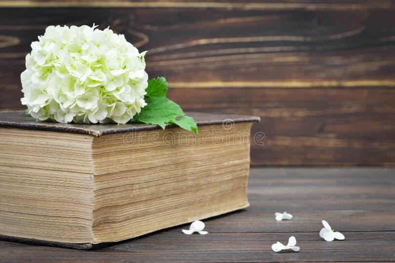 Blomma och gammal bok royaltyfria foton