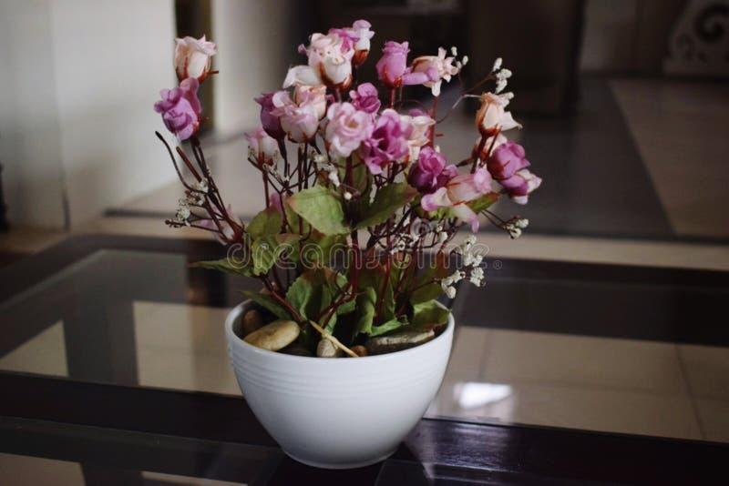 Blomma och vasen royaltyfri fotografi