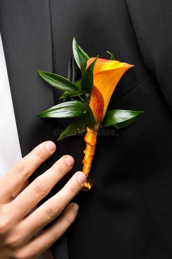 Blomma på brudgum royaltyfria bilder