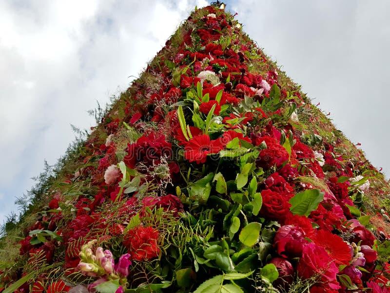 Blomma Piramid royaltyfria bilder