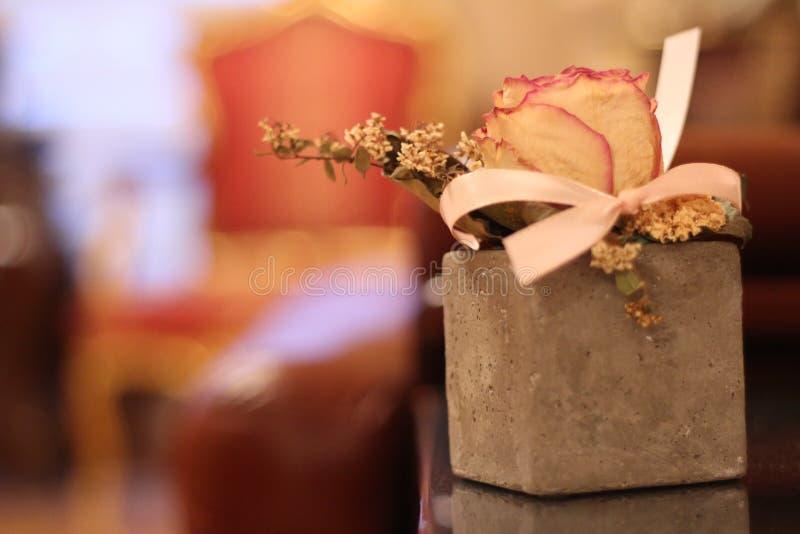 Blomma som planteras i en tegelsten royaltyfria foton