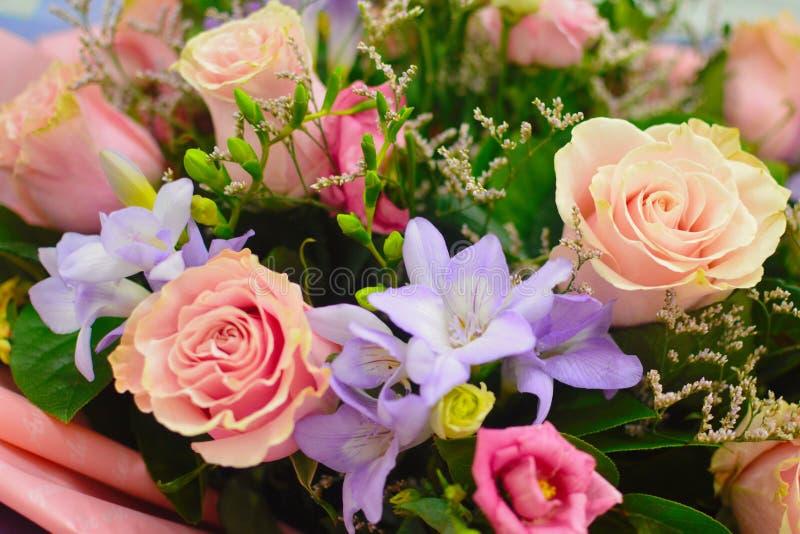 Blommabakgrund av färgrika blommor royaltyfri fotografi