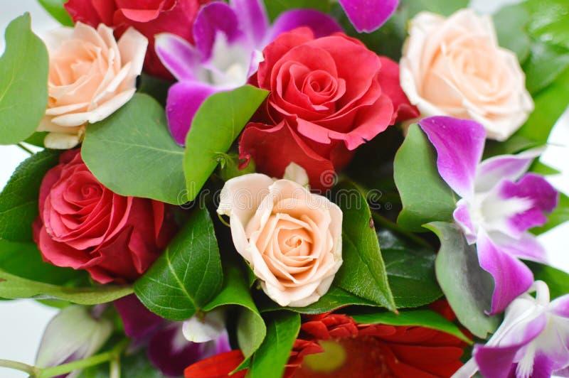 Blommabakgrund av färgrika blommor arkivfoton
