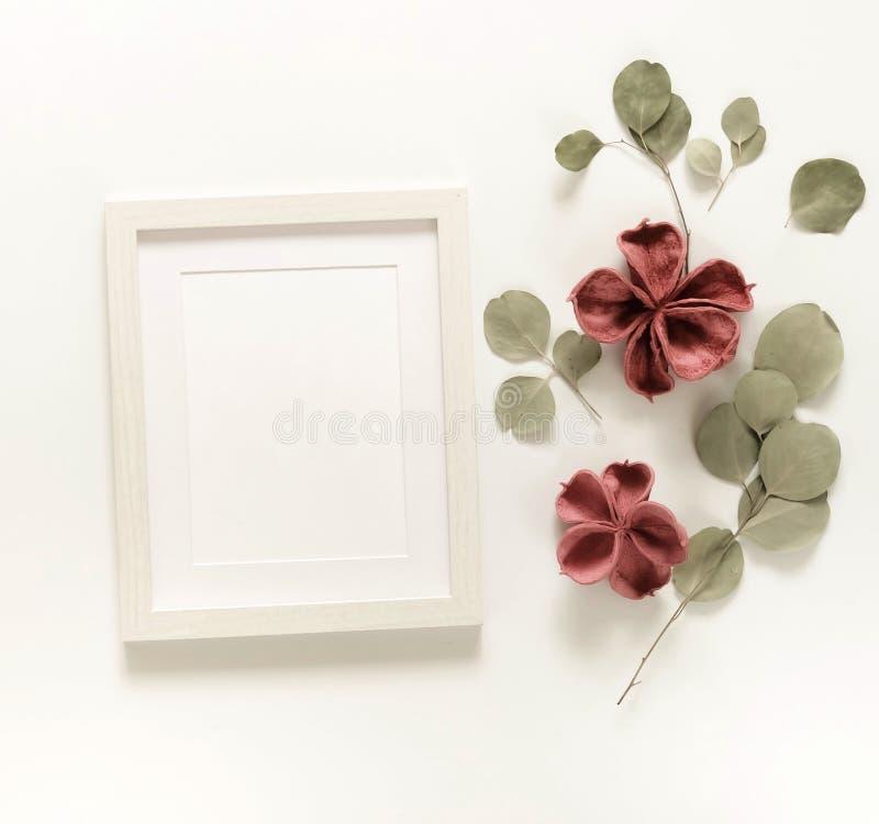 Blommabakgrundssammansättning Fotoramåtlöje upp, torkade blommor arkivfoton