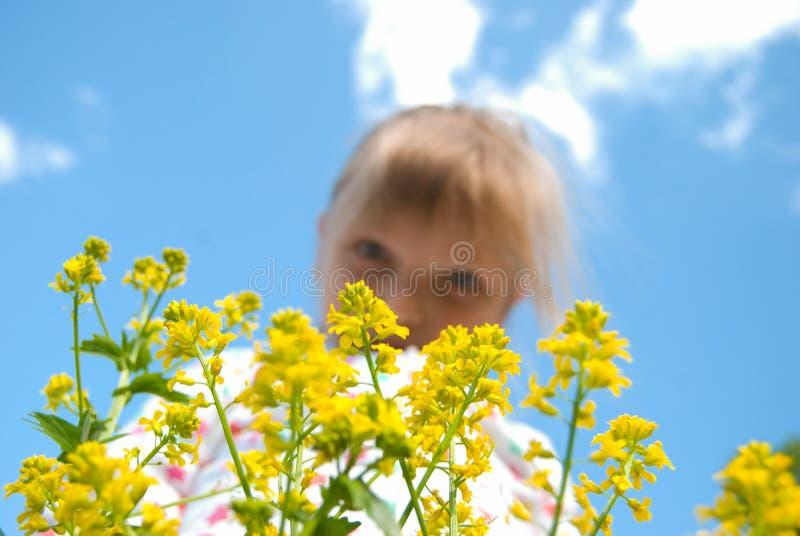 Blommabarn och himmel arkivbilder