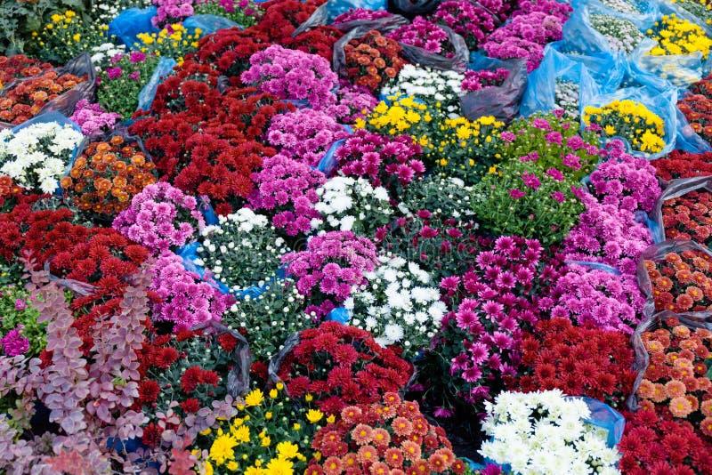 Blommabuketter lagret, trädgård shoppar Härlig floraförsäljning royaltyfria foton