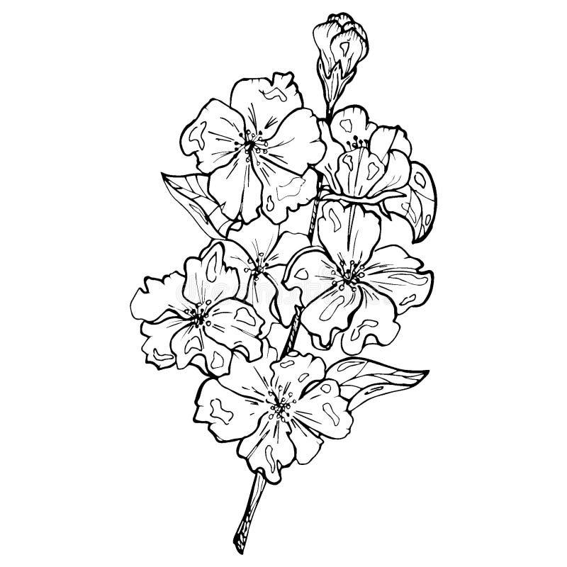 Blommaetsningstil vektor illustrationer