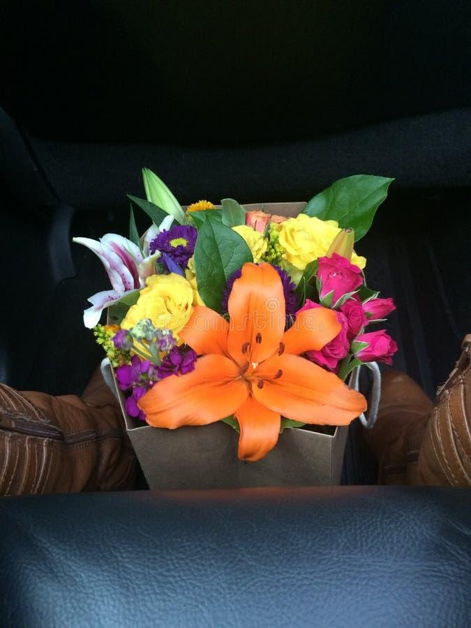 Blommaförälskelse royaltyfri bild
