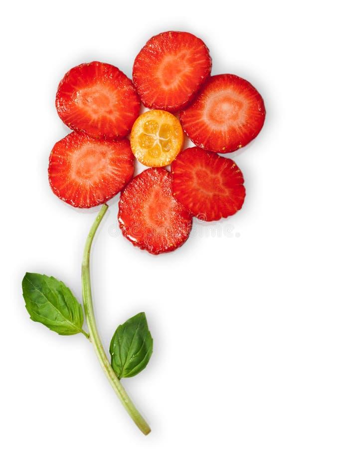 blommafrukt royaltyfria foton