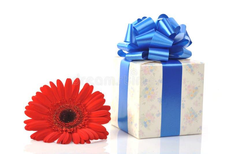 blommagåvared fotografering för bildbyråer
