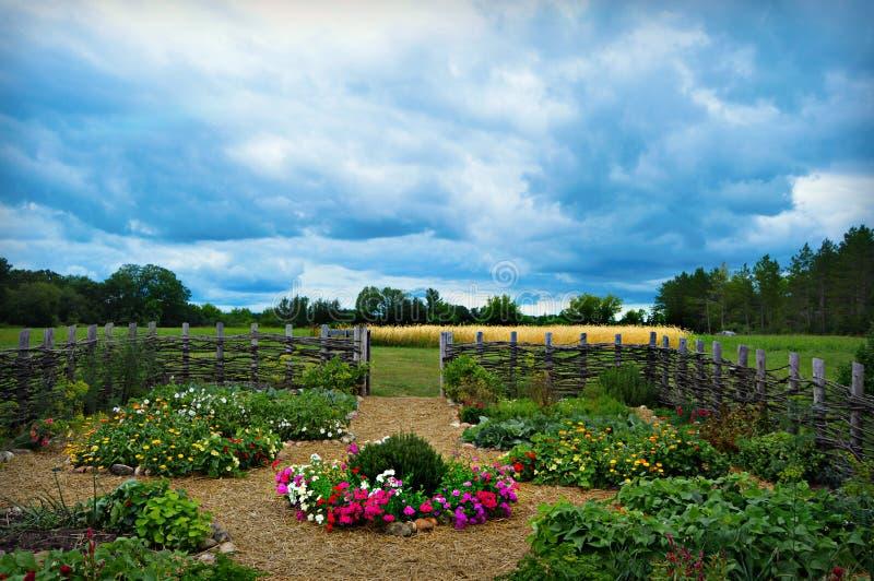Blommagrönsakträdgård royaltyfria bilder