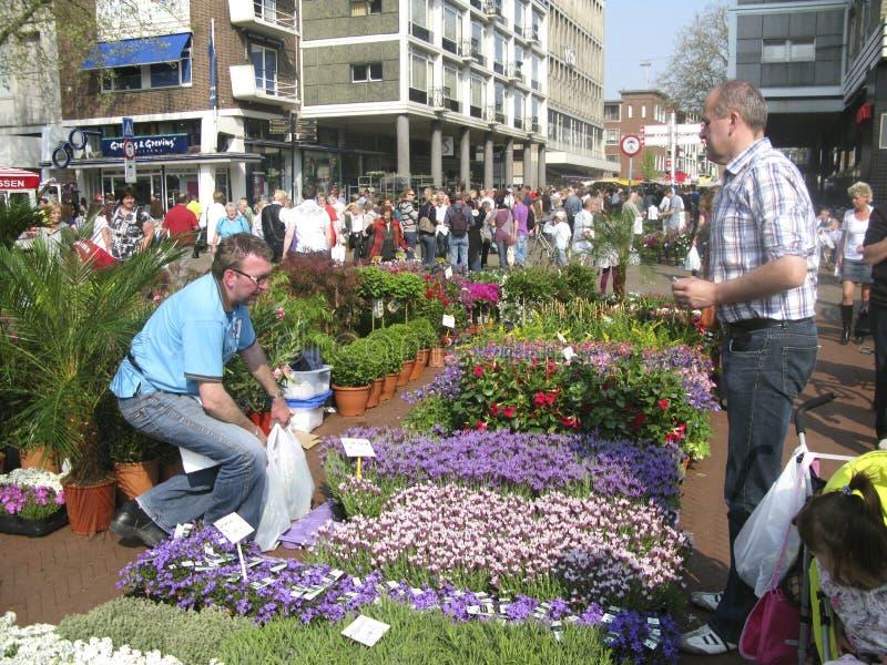 blommagroningen marknad arkivbild