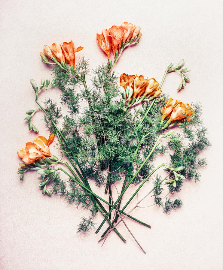 Blommagrupp med freesiablommor royaltyfri bild