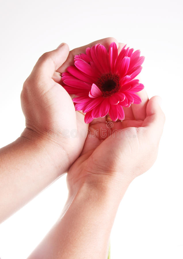 blommahand arkivbild