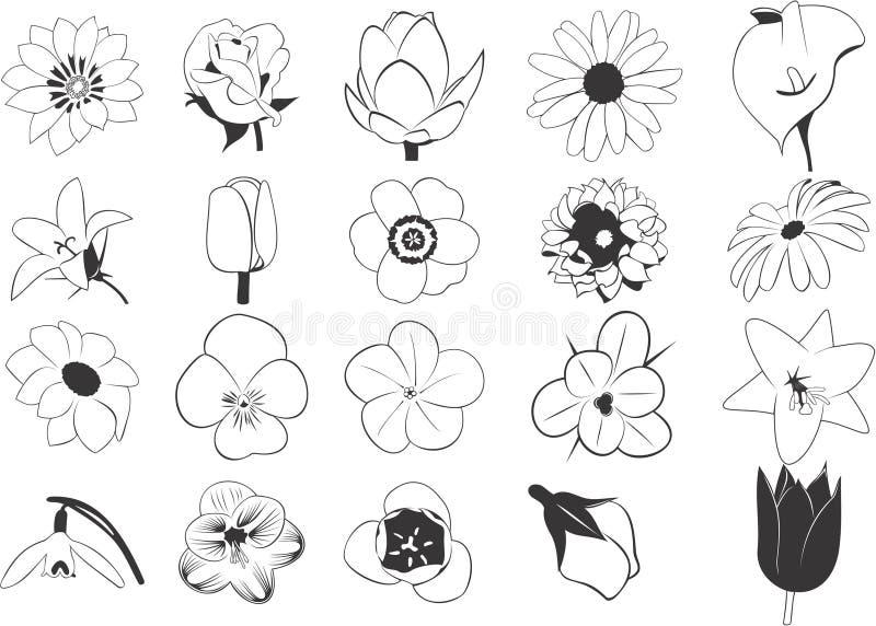 blommaillustrationset vektor illustrationer