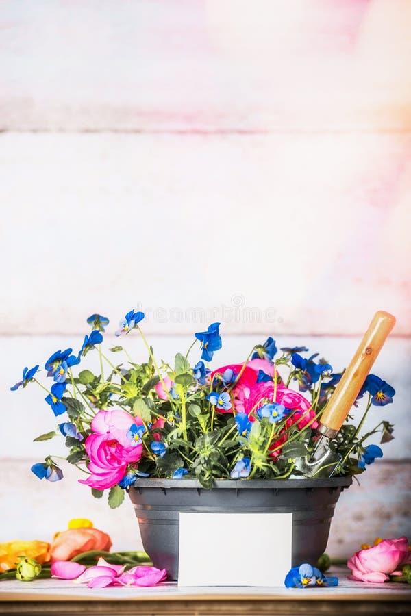 Blommakruka med det vita kortet för skyffel och för mellanrum på att arbeta i trädgården tabellen på vit träbakgrund royaltyfria foton