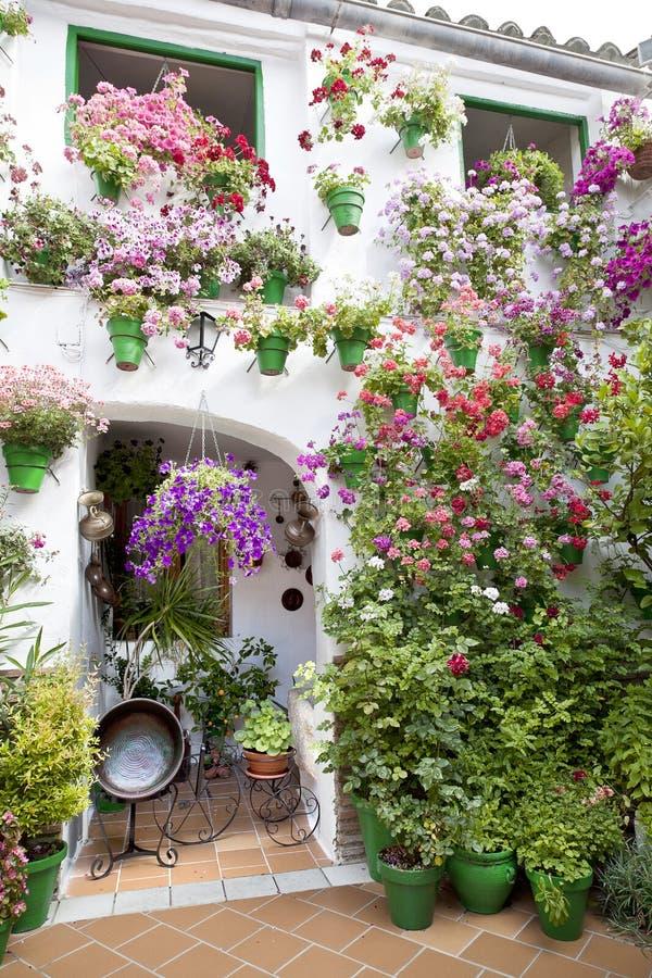 Blommakrukor som står i en Andalusian uteplats. royaltyfria foton