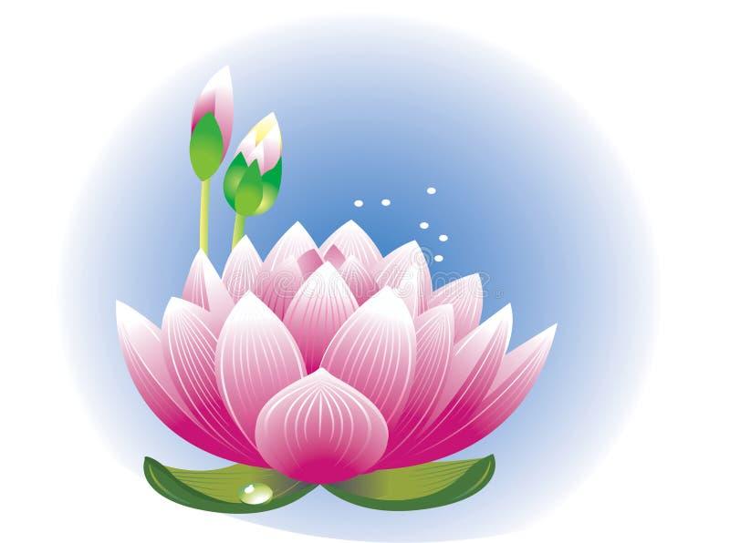 blommalotusblomma royaltyfri illustrationer