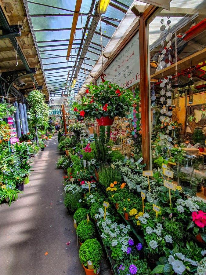 Blommamarknaden i Paris lokaliserade på Ilen de la Citera, mellan det Notre-Dame domkyrka- och Sainte-Chapelle kapellet arkivbilder