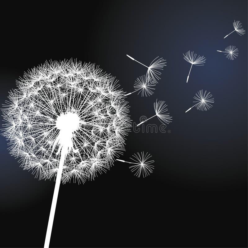 Blommamaskros på svart bakgrund royaltyfri illustrationer