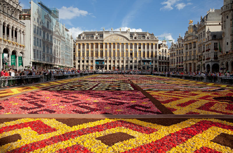 Blommamatta i Grand Place av Bryssel mot blå himmel royaltyfri foto