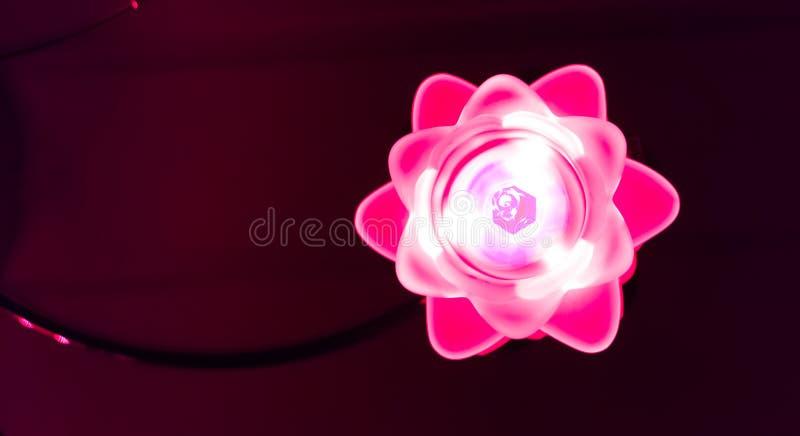 Blomman formade lampan som skiner rosa ljus i den mörka härliga moderna lampgarneringen arkivbild