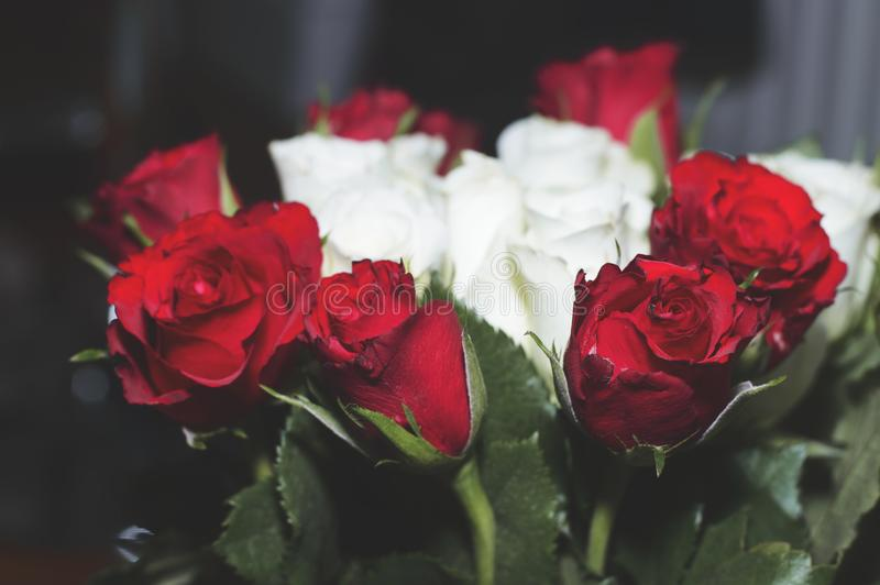 Blomman grinar blomman buketten steg royaltyfri fotografi