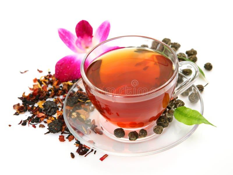 blomman rånar tea royaltyfria foton