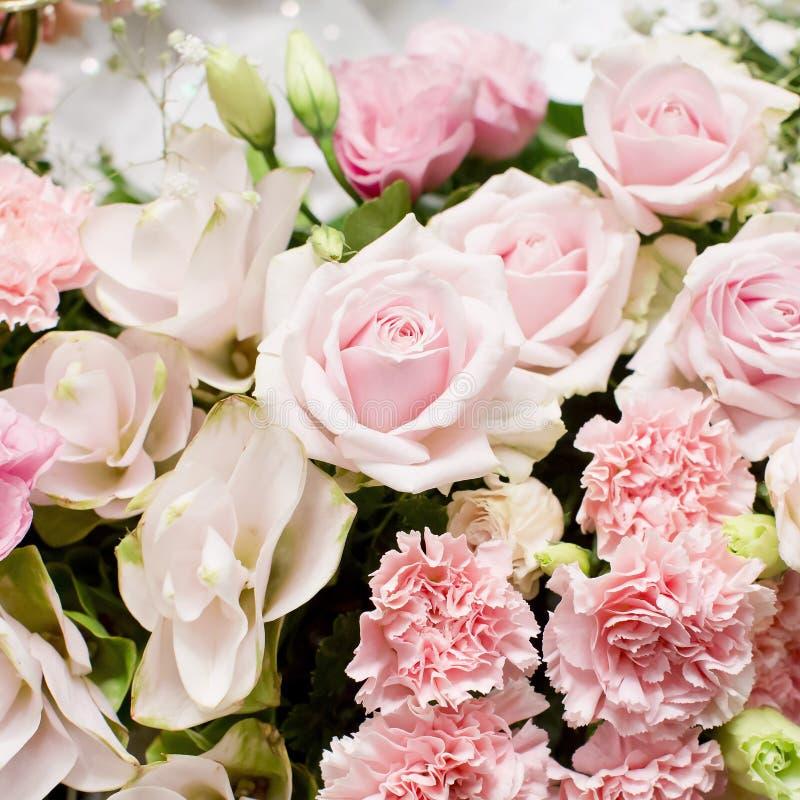 Blommande härlig rosa färgblomma för garnering royaltyfria foton