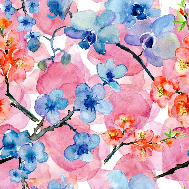 Blommande japanska kronblad och blommor för körsbärsrött träd royaltyfri illustrationer