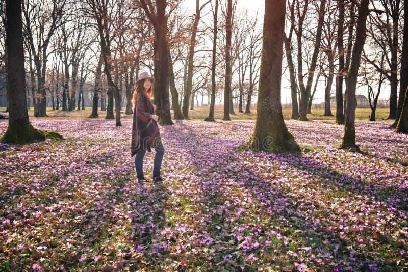 Blommande natur, krokusar, ung handelsresande arkivbilder