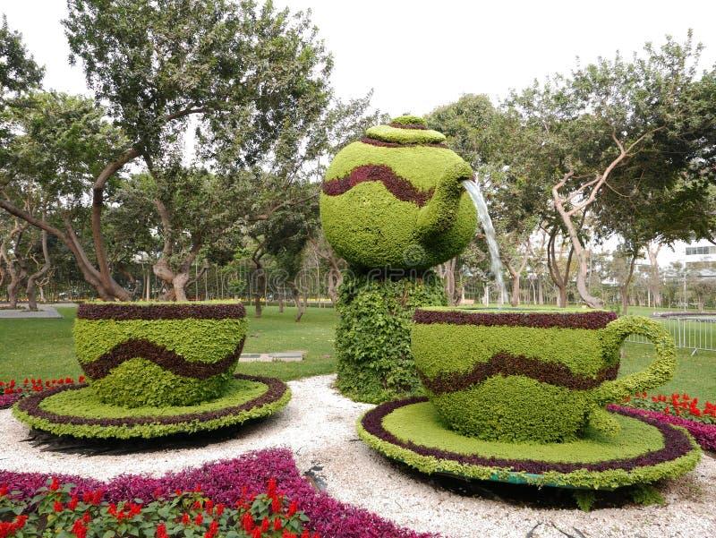 Blommaordning i Lima Reserve Park, Peru royaltyfri bild
